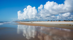 Washington Oaks park in Palm Coast (tfhammar) Tags: palmcoast staugustine florida atlantic coast coquina golden sand
