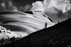 Prominence (Chris Williams Exploration Photography _) Tags: alaska sunset trees tree forest mountains snow ice clouds light nature glacierbay fujifilmxt2 xt2 fujixt2 fujifilm induro blackandwhite monochrome