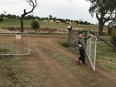The gate keeper (Stinkee Beek) Tags: australia tasmania hobart heatherbellcottage ethan