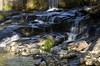 mirar y escuchar (_DSC3886) (Rodo López) Tags: rios elbierzo españa explore excapture elcampo zeiss spain sentimientos sol nikon naturaleza nature naturalezacautivadora nostalgia naturebynikon ngc