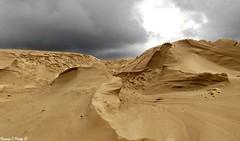 Dune du Pyla (Noemie.C Photo) Tags: dune pyla sand sable beach plage ciel sky clouds nuages gris grey jaune yellow light lumiere contrast details specifics france bassin arcachon nature