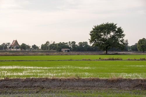 singburi - thailande 27