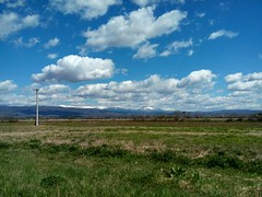 field vs sky