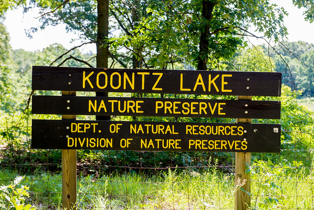 Koontz Lake Nature Preserve - July 18, 2017