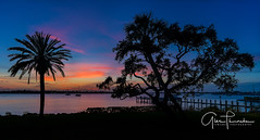 Florida Life: St. Lucie Bay Sunset (Thūncher Photography) Tags: sony a7r2 sonya7r2 ilce7rm2 zeissfe1635mmf4zaoss fx fullframe scenic landscape waterscape nature outdoors sky clouds colors shadows silhouettes sunset tropical palmtrees beach harbor pier docks boats stuart florida southeastflorida martincounty