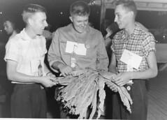 1118 (kentuckyffa) Tags: kentucky state fair tobacco ffa