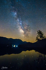 El reflejo de las estrellas (Silvia Illescas Ibáñez) Tags: verde stars estrellas astronomia astronomy astrofotografia astro astrophotography sky cielo noche night photography fotografía milkyway vialacteal lago lake reflejo reflection nature natura naturaleza toxina 1120 canon canon7d árbol tree composition composing