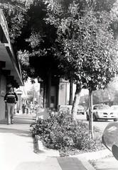 Santa Cruz Avenue (menloparkplanning) Tags: menlopark california sanmateocounty downtown elcaminoreal scannedphoto historicalphoto historical