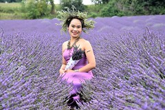 Lady in Lavender. (pstone646) Tags: woman portrait pretty people lavenderfield kent purple