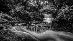 The falls of Time... (Einir Wyn Leigh) Tags: blackandwhite monochrome landscape wales cymru moody water cascade waterfall4joy bridge forest longexposure le trees countryside wilderness happy uk britain