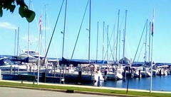 Marina - sailing season here again! (Maenette1) Tags: marina boats water flags sky menominee uppermichigan flickr365