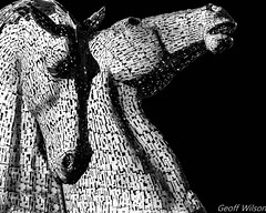 Kelpies (Hawk 3663) Tags: kelpies sculptures scotland samsungnx30 horses structure forthclyde blackwhite