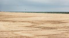 Раздолье (klgfinn) Tags: balticsea beach curonianspit landscape sand sea shore sky skyline summer water балтийскоеморе берег вода горизонт куршскаякоса лето море небо пейзаж песок пляж