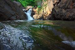 NBK Valley DSC_3771 (touhenboku) Tags: iwana char イワナ fly fishing flyfishing rock stream headwater fall