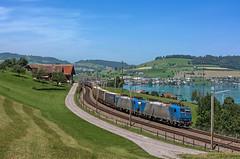 185 536 (maurizio messa) Tags: crossrail alphatrains br185 bombardier traxx nikond7100 schwyz switzerland svizzera 40185 cargo mau bahn ferrovia freighttrain fret guterzuge railway railroad treni trains