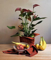 Sketch (Esther Spektor - Thanks for 12+millions views..) Tags: sketch stilllife naturemorte bodegon naturezamorta stilleben naturamorta composition arrangement creativephotography artisticphoto plant tabletop food banana peach fruit pot drappe bowl flowers calla lily availablelight pattern ceramics linen yellow green crimson red brown estherspektor canon
