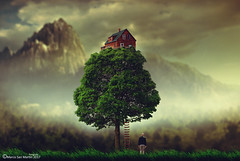 A house on the tree (The memory of tree) Tags: nature naturaleza dreams beautiful mountains tree arbol man hombre composition creative design art arte mistrabajos marcosanmartin explorer ahouseonthetree magical magico feeling love mood fineart lonely silenced emotional