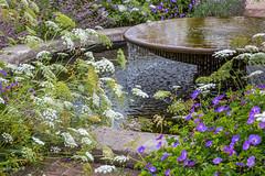 Wisley fountain (Bridgit Weekes) Tags: summer garden flowers fountain water closeup slowshutter longexposure wisley