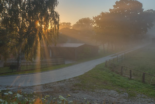Just another misty morning ...