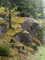 Cliffs_by_a_misty_road_in_Holma (aka CJ) Tags: cliffs moss mist damp spring