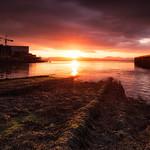The Port of Glasgow thumbnail