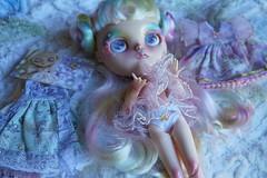 DSC02978 (Lindy Dolldreams) Tags: blythedoll starrytaledolls twinkle fantasy dnchllama