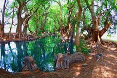 Michoacán (pedro3Z) Tags: naturaleza méxicomaravilloso michoacan coloresdeméxico paisaje lagos