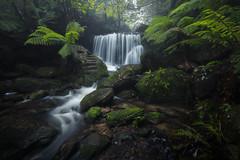 Weeping Rock (Craig Schulstad) Tags: waterfall cascade bluemountains longexposure nsw newsouthwales australia leura nikon fog mist waterscape