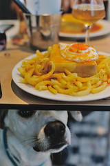 francesinha @ Capa Negra II with Ice the Dog (Gail at Large | Image Legacy) Tags: 2017 icethedog porto portugal restaurantecapanegraii francesinha restaurant restaurante
