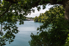 River Dart upstream from the Greenway Battery