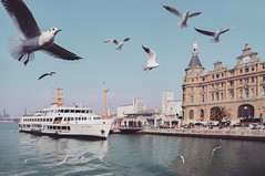 Somewhere I Belong (u c c r o w) Tags: istanbul türkiye turkey türkei ferry ship vapur marti seagull bird birds haydarpasa kadikoy asia bosphorus turkish uccrow iskele harbour harbor