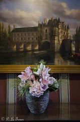 Le bouquet de chenonceau 02 (letexierpatrick) Tags: chenonceau flowers fleurs fleur flower france colors couleurs couleur châteaudelaloire nikond7000 nikon bouquet