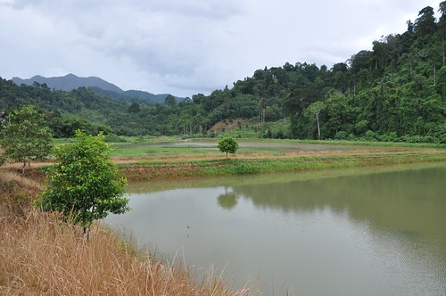 nakhon si thammarat - thailande 10