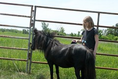Assessment-Horse-Therapy-20170607 (14)