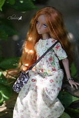 IMG_8252 (Cleo6666) Tags: lana lillycat cerisedolls marron glacé bjd doll chibbi