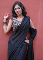 Indian Actress Haripriya Hot Sexy Images Set-2  (89)