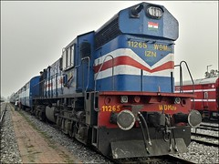 IZN WDM-3D #11265 Waiting for its next Duty (Anubhav_Kashyap) Tags: indianrailways wdm3d 11265 irfca locomotive dlw diesellocomotiveworks alco americanlocomotive incredibleindia indiatravel hulk flickr morning sunrise izn izatnagar