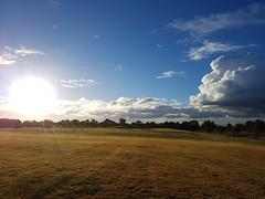 Yellow Giant (Paul Threlfall) Tags: sun bicentennialpark chelsea clouds aftertherain winter rays