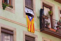 Spirit of Catalonia (Reisabove8) Tags: spain barcelona fcbarcelona soccer pride catalonia flag europe spanish canon travel escapades adventure explore