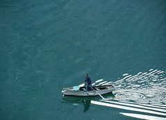 Building Muscles Collecting Mussels (Grooover) Tags: water boat fisherman rowing kotor bay montenegro grooover