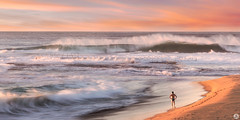 No Swimming (John_Armytage) Tags: monavale monavalepool tidalpool swell hugeswell swimmer swimming landscape beach northernbeaches sonya7r2 canon2470 johnarmytage