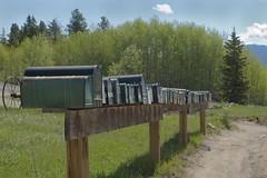 Rural free delivery (Rocky Pix) Tags: ruralfreedelivery lumpgulchhighway postal mail boxes tolland trip moffattunnel mammoth valley housing unionpacific up drgw denverriograndewestern denvernorthwesternpacificrr dnwprr grade mammothpark denversaltlake dsl rollinsville rockypix rocky mountain pix wmichelkiteleyf16 180thsec 66mm 2470mmf28g nikkor normalzoom monopod