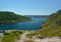 St. John's Harbour (Paul J Buda) Tags: signalhill newfoundland stjohns