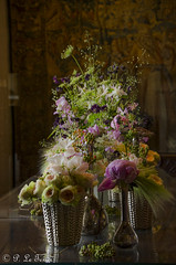 Le bouquet de Chenonceau (letexierpatrick) Tags: chenonceau france fleurs flowers fleur couleurs couleur colors châteaudelaloire bouquet nikon nikond7000