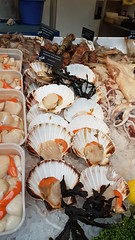 Scallops for sale at Borough Market (Donald Morrison) Tags: london holiday city scallops clams seafood boroughmarket