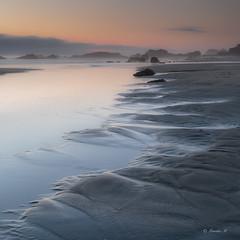 (Masako Metz) Tags: sunset beach fog rocks sand ocean sea water landscape seascape pattern nature square oregon coast pacific northwest usa america soft light outdoor