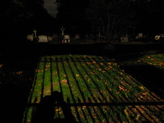 Through Gates of Shadow (failing_angel) Tags: 081016 london kensingtonchelsea bromptoncemetery monthofthedead londonmonthofthedead cemetery magiclantern throughaglassdarkly mervynheard phantasmagoria