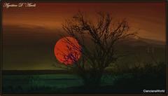 Tramonto di fine inverno - Luglio-2017 (agostinodascoli) Tags: sole tramonto cielo albero mandorlo sunset paesaggi nature agostinodascoli cianciana sicilia texture creative photoshop photopainting digitalpainting art digitalart landscape nikon nikkor