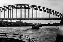 _DSC7651zwwt (durr-architect) Tags: spiegelwaal ruimte room river waal nijmegen netherlands high water flood island bridge nevengeul