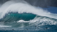 Nth Avalon turns on the waves (Peter Squires - Photos) Tags: avalonbeach surfing